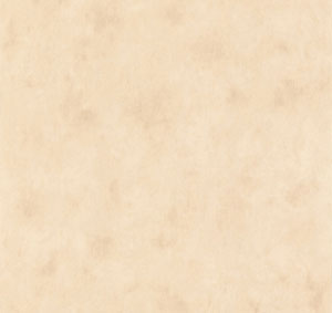 Tapeten Farbe beige changierend Muster 35-688811